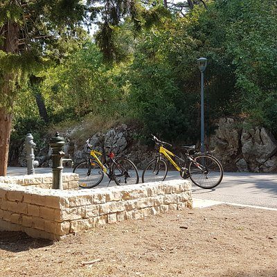 Bikes we rented in the Marjan Forest Park