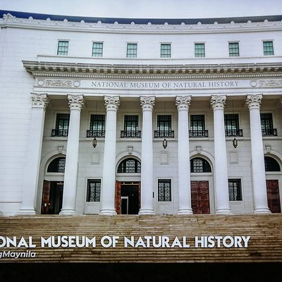 National Museum of Natural Hstory