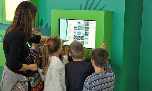 Interaktív kiállítások a Keszthelyi-hegység növény- és állatvilágáról.