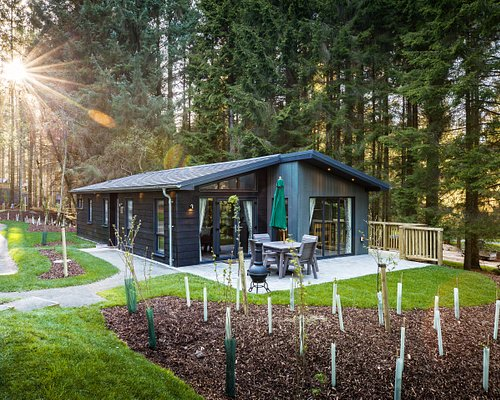 One of our gorgeous Woodland lodges