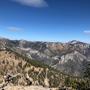 Mt. Charleston is to the left.