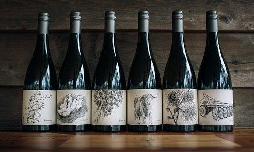 Windows Estate wines