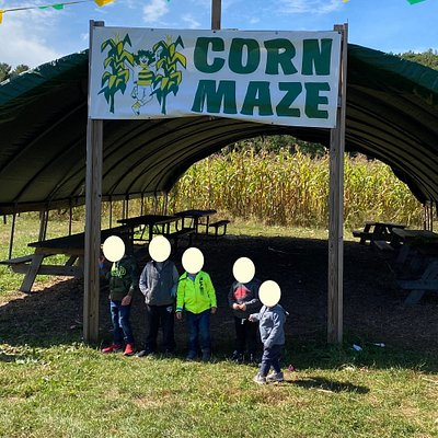The core maze at Hanson's Farm - with picnic tables in the shade to relax at if it gets too hot