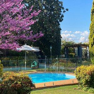 Pool in Springtime