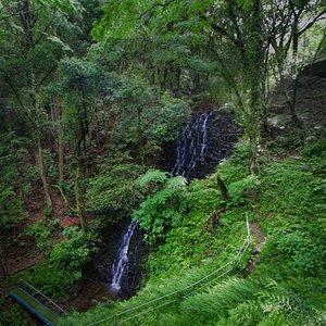 雄飛滝:遊歩道から見下ろしたところ。滝前に橋がかかっていますね。