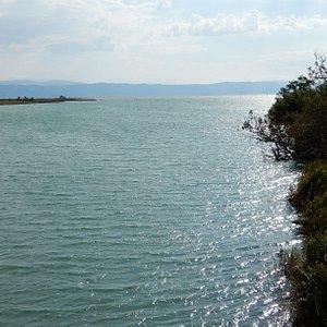La foce dell'Isonzo