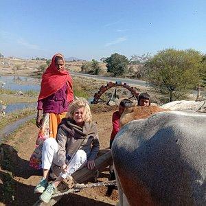 Rajasthan tour ( Ranakpur)
