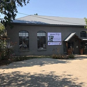 The Warren Cary Wildlife Gallery and African Detail Boutique. Home to over 20 of South Africa's finest wildlife artists, bronze sculptors and fine art photographers.