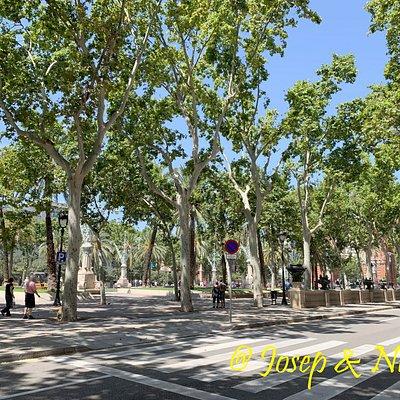 Passeig Lluís Companys - Vista general