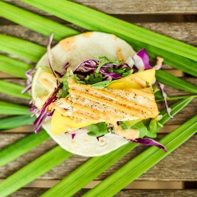 Fish Taco on the Historic Seaport Tour