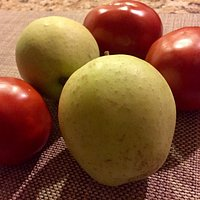 Apples and tomatoes from Carver Hill Orchards