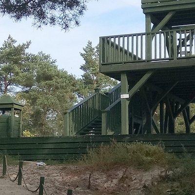 platforma do obserwacji ptaków