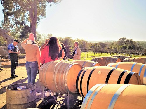 Meet the owners & winemakers and learn from them