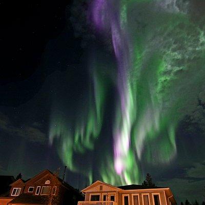 Colourful aurora at Yukon Home and Tour...