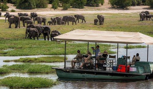 Chobe National Park Safaris