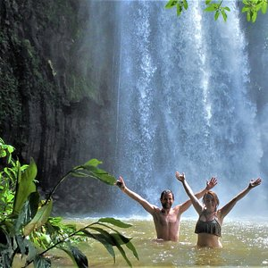 Millaa Millaa Falls   World Heritage Wet Tropics Rainforest   Oldest Low-laying Rainforest in the World   Barefoot Tours   Atherton Tablelands Waterfall Day Tour  (c) Barefoot Tours