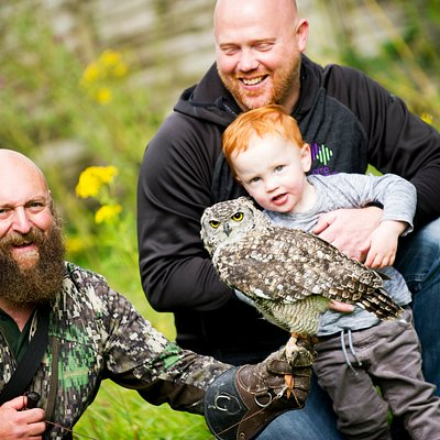 Families love our owls