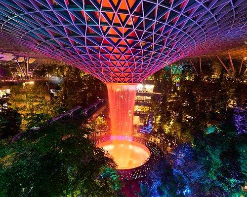 Night View of the HSBC Rain Vortex