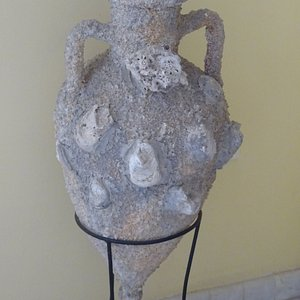 """Fossils of the """"Petrified Forest of Limnos"""" are exhibided in the building of Moudros Town Hall - Lemnos, Greece"""