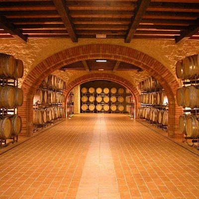 La nostra barricaia: qui invecchino i nostri special i vini rossi