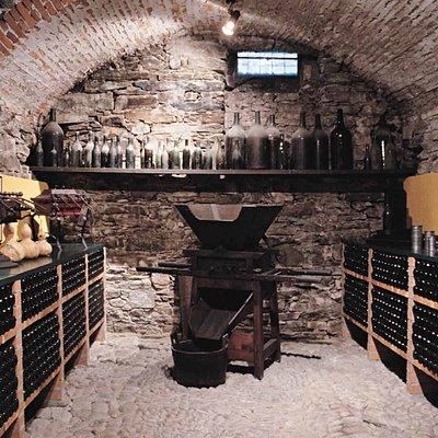 Museo del Vino - Tenero-Contra