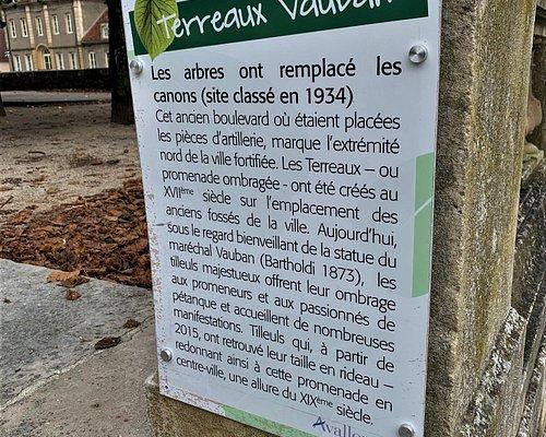 Vauban était un architecte militaire exceptionnel, qui, promu par Louis XIV, a marqué son époque par de gigantesques chantiers de places fortifiées. Mais il fut un créateur de génie à l'activité débordante dans de nombreux domaines, l'urbanisme, l'hydraulique. Il fut aussi penseur et essayiste français.