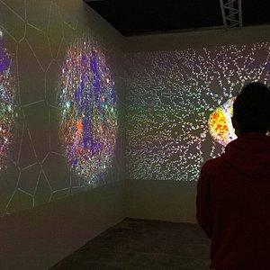 """La sezione interattiva """"Imaginaire Scientifique"""": tutto cominciò con una raccolta di foto"""