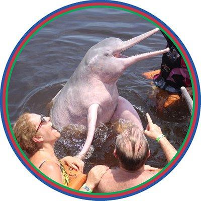 Faça como milhares de nossos amigos clientes e venha experimentar a emoção de nadar ao lado do mitológico boto cor de rosa no passeio Safári Amazônico. Isso e muito mais você vivencia neste maravilhoso passeio promovido pela Olímpio Carneiro Turismo.