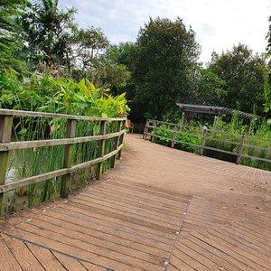 Wetlands Park