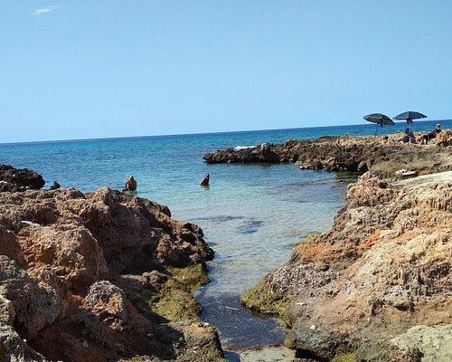 Poseidonia all'ingresso in acqua