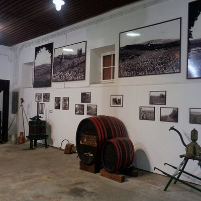 Kings Winery - Topola (Serbia)