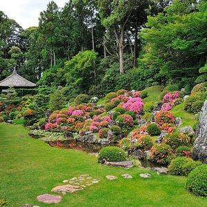 庭園+春 / Garden + spring