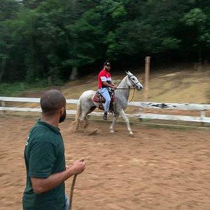 Aulas de Equitação Básica