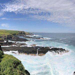 The Nobbies coastline
