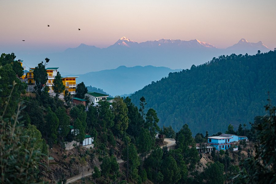 JUSTA MUKTESHWAR RETREAT & SPA (Uttarakhand) - Hotel Reviews & Photos -  Tripadvisor