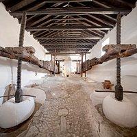 La impresionante nave de prensado de la Almazara La Erilla   The impressive pressing room in the Almazara La Erilla