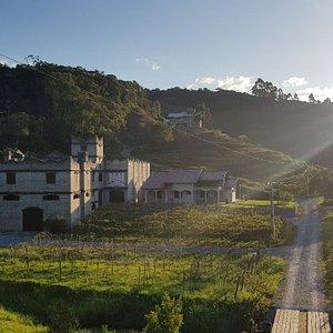 Vinicola Castel
