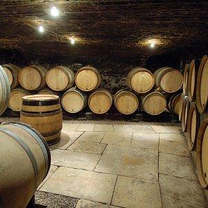 Dégustations des vins dans nos caves
