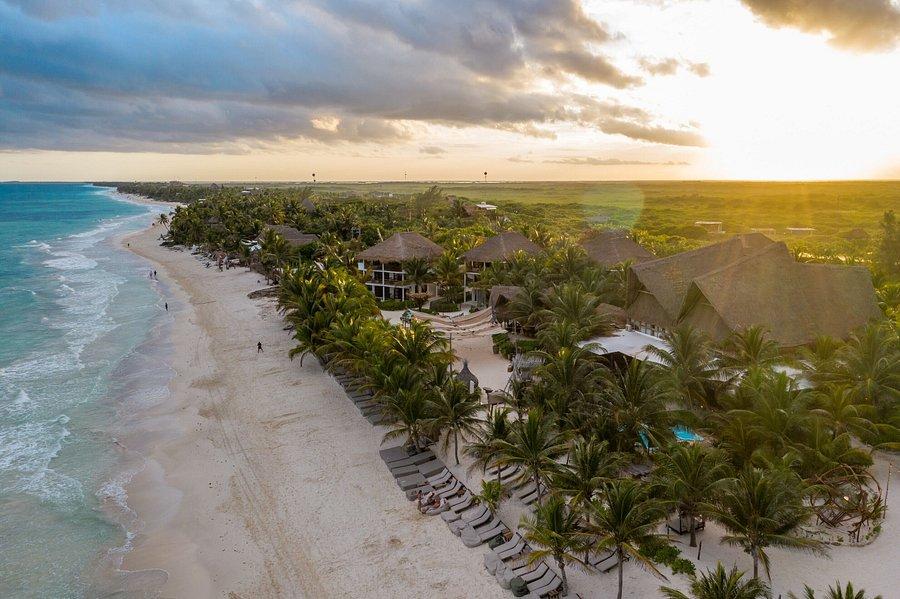 SELINA TULUM $93 ($̶2̶0̶2̶) - Updated 2021 Prices & Hostel Reviews - Mexico  - Tripadvisor