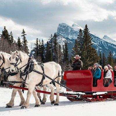 Winter sleigh rides in Banff.