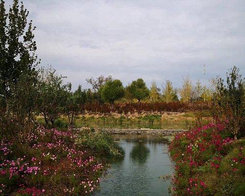 Beijing Wenyu River Park