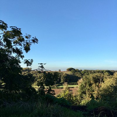 Riserva Malafede - panorama
