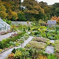 Shambellie Walled Garden