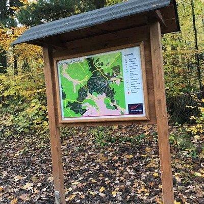 Mestský les Waldpark (Stadtwald)