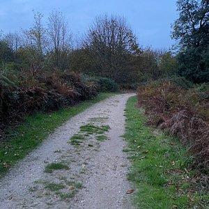 Parc de Sallegourde