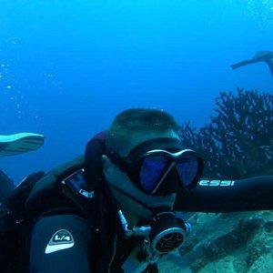 Just Diving Centre de plongée PADI 5*, Center PADI Tec Rec au nord de l'ile maurice.