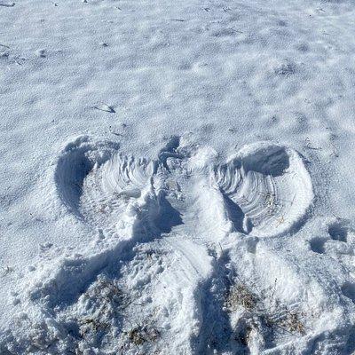 Schneeengel auf der Engstligen
