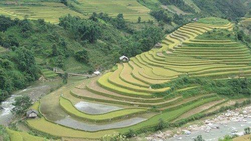 Amazing terrace rice paddies in Mu Cang Chai!