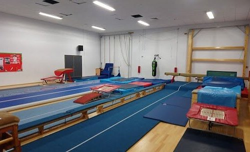 Our Nobel Gym Setup - Got a picture from Swan Website.