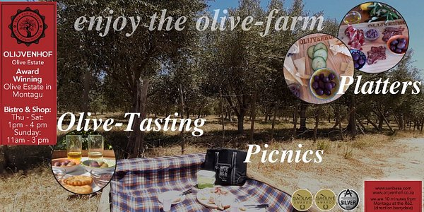 Enjoy the Olive-Farm with a Olive-Tasting, Platters (Chees- and Mixed) or picnic under olive-trees